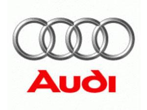 Audi Differentials