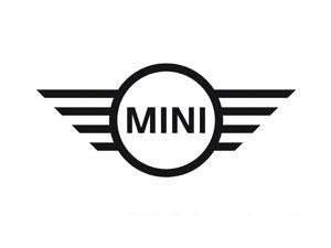 Mini Cooper Differentials